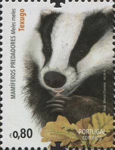 0.80c postage stamp from Portugal featuring the Eurasian badger (Meles meles)