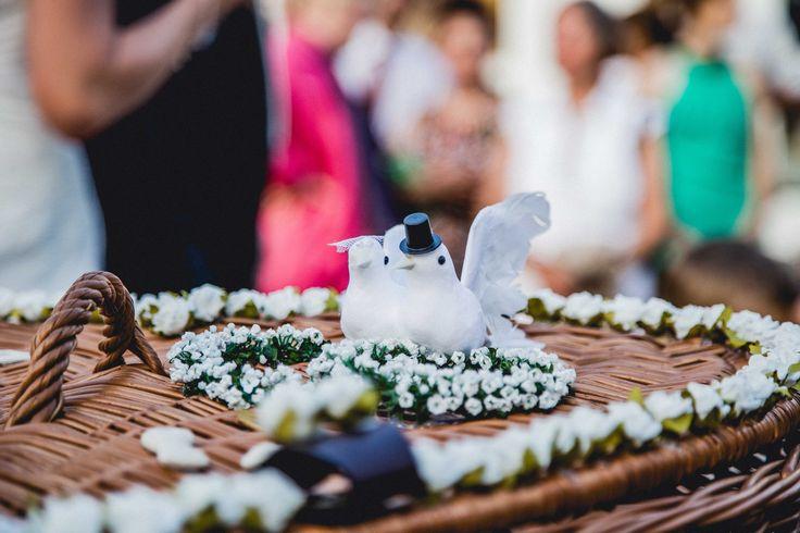 Hochzeitstauben. Hochzeitsfotografen- und Videografen.