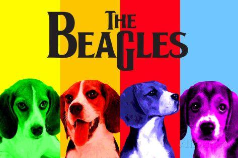 Beaglet Posters AllPosters.fi-sivustossa