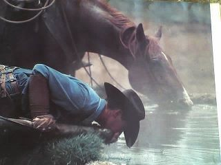 She could have laughed, but it was more funny than sweet. His connection with the animals; especially his horse was a special bond.