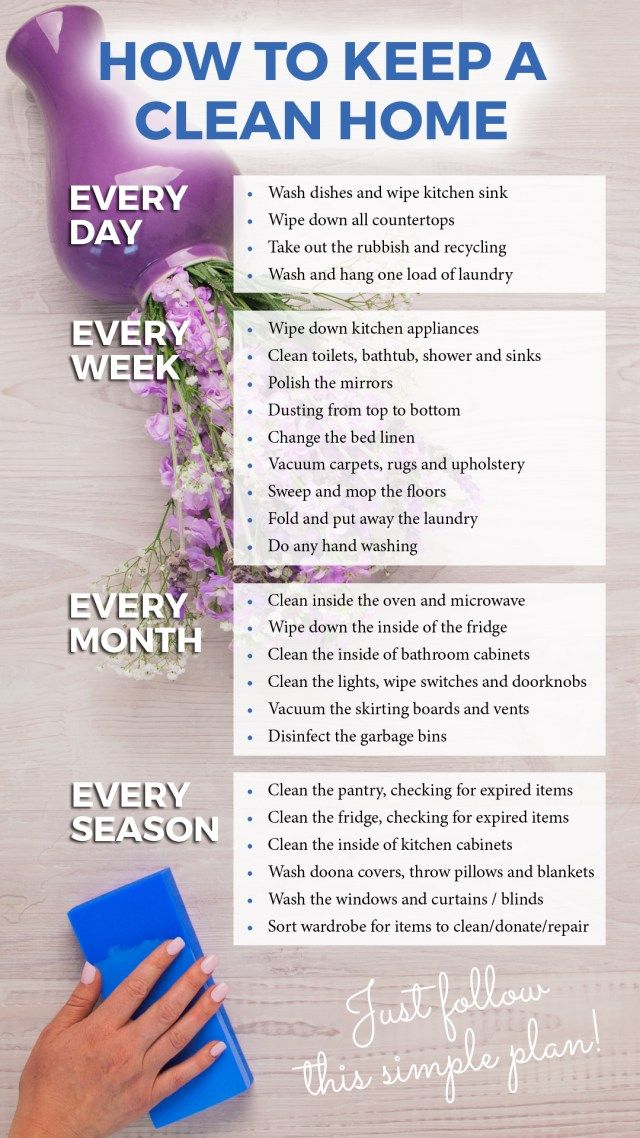 how to keep a clean home infographic