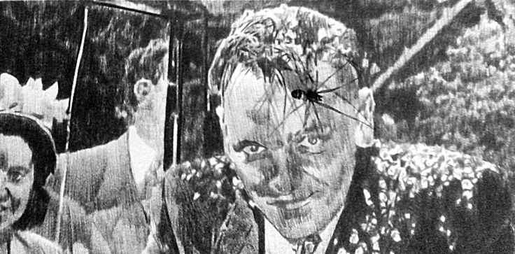 Love & Marriage (with spider), Chris Shaw Hughes. Photo by Crea Digol.