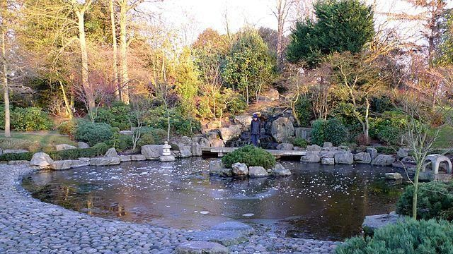 Kyoto Japanese Garden at Holland Park.