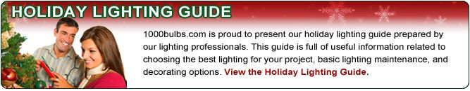 the best place to get Christmas lights and any other lights you might want or need