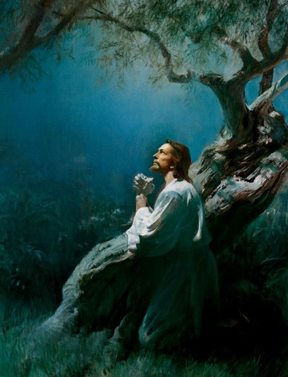 Christ In Gethsemane Painting By Harry Anderson Jesus Pictures Jesus Praying Pictures Of Jesus Christ