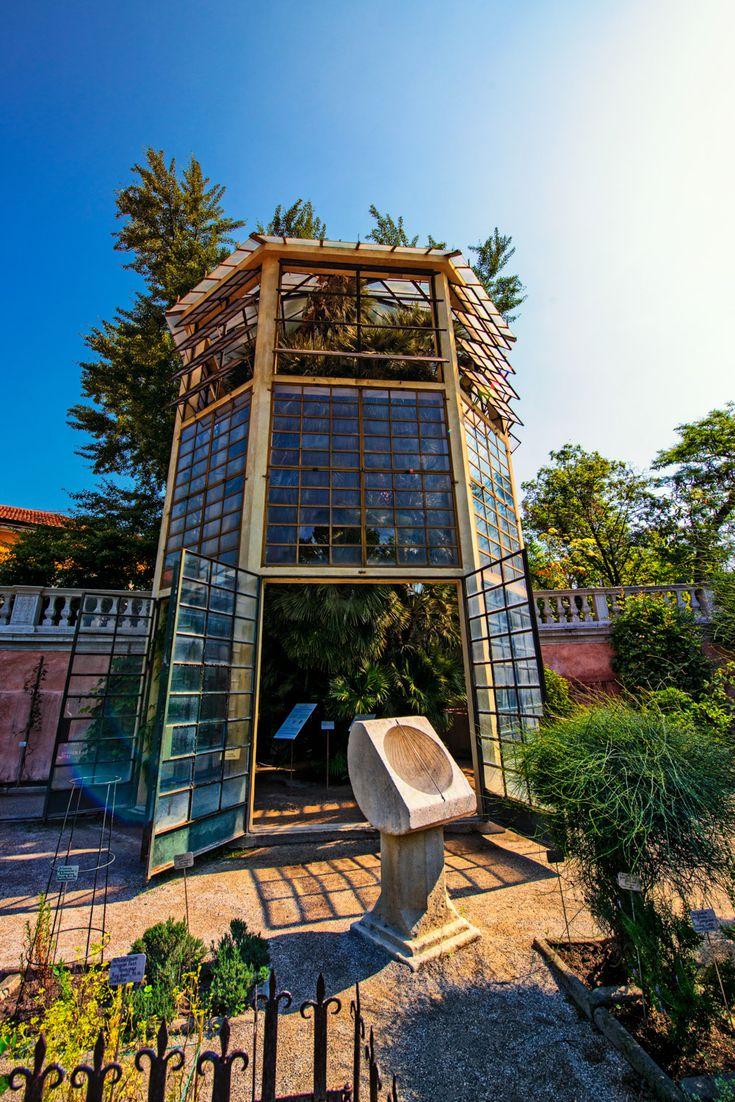 """L'orto botanico di Padova nasce come """"giardino dei semplici"""" e cioè come luogo in cui recuperare piante medicinali a fini terapeutici o di studio"""
