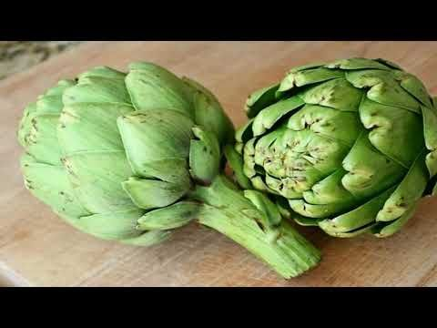 Artichoke - A Variety of a Species of Thistle