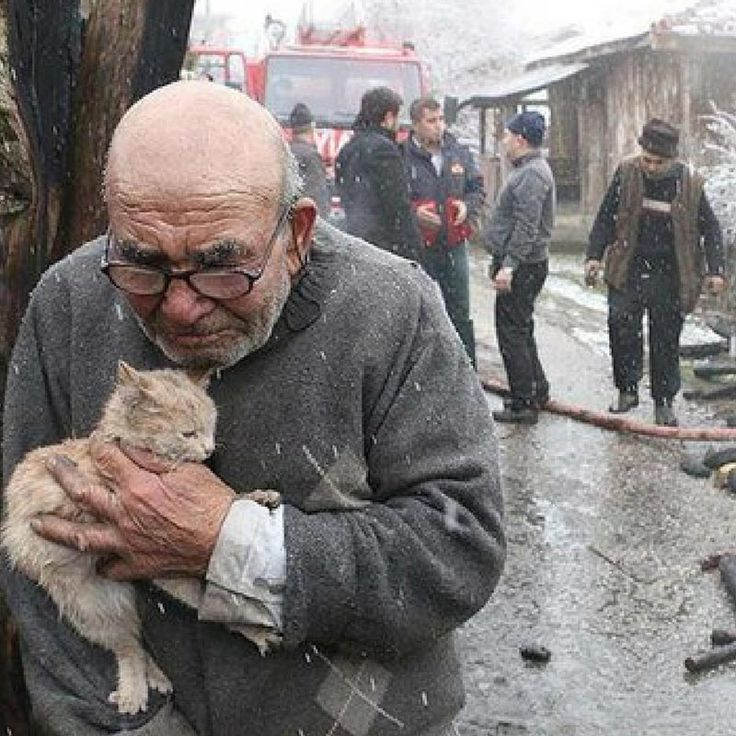 Man Hugs Cat After Tragic House Fire