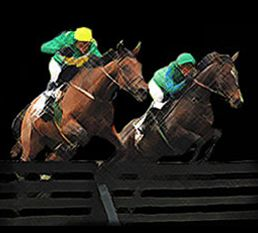 Grand National Betting helps you find the best online bookmakers who offer the best free bets for new customers, it's easy to bet online. http://www.grand-national-betting.net/