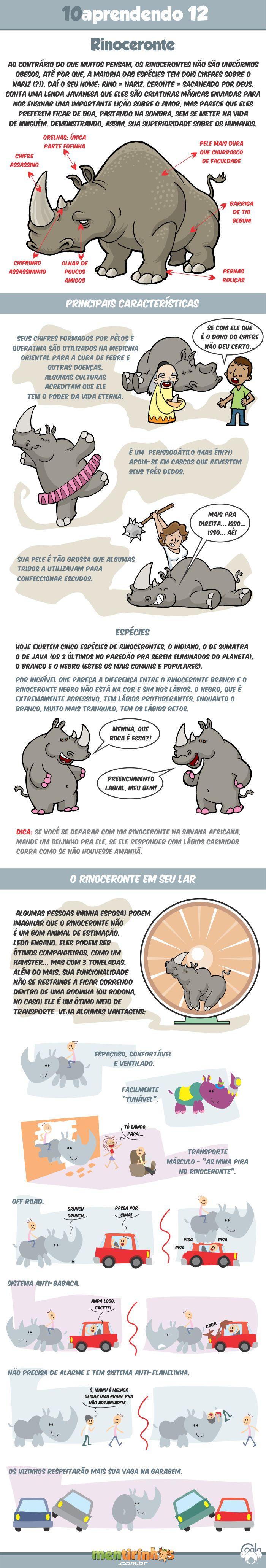 10aprendendo com o Coala #12 - Rinoceronte
