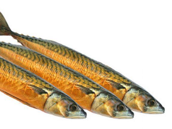 Kann Räucherfisch so gesund sein wie frischer Fisch? Erfahren Sie es hier.