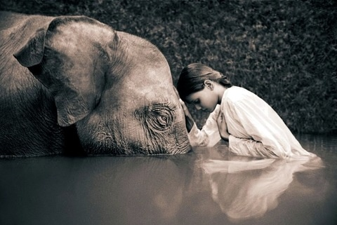 Ashes and Snow -Gregory Colbert (8)