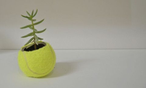 Pippa Makgill tennis ball planter| Mr Kitly