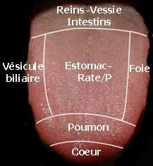 http://www.passeportsante.net/fr/Therapies/MedecineChinoise/examens_observer.aspx
