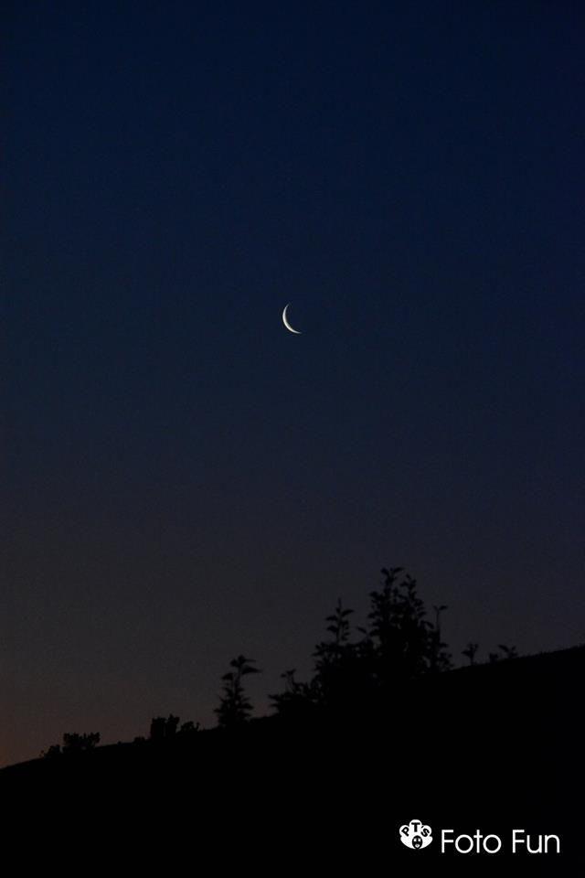 Moon in Te Miro, NZ,  PT´s foto Fun