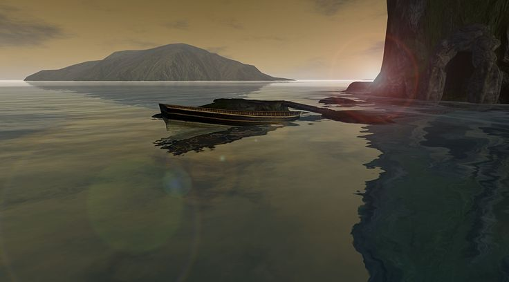 @ Pino Ancient Tree sim... a backlit shot