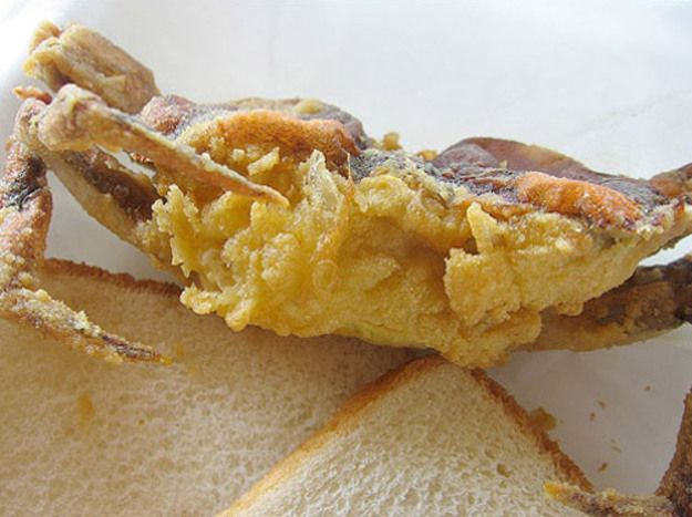 A Beginner's Guide to Soft Shell Crabs