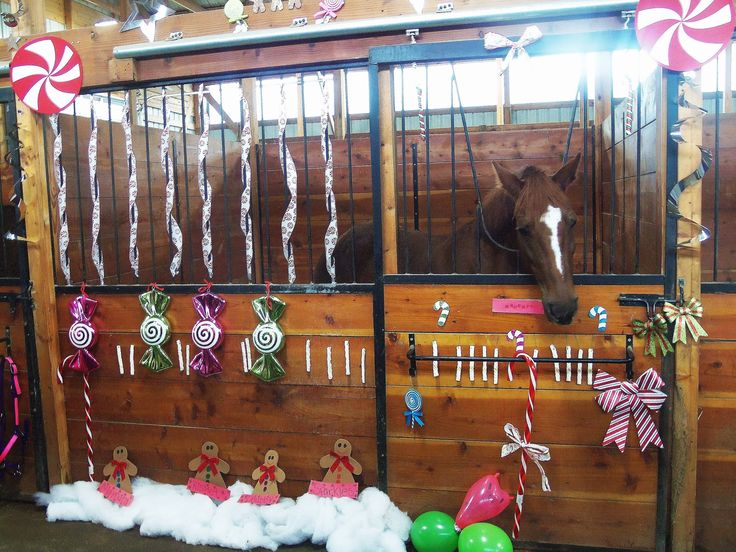 decorating horse stalls for christmas can be a lot of fun whether a spectator judge or decorator we all had a great time decorating horse stalls for - Horse Stall Design Ideas