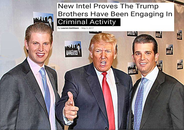 The assertions that Donald Jr. and Eric have been involved in illegal activity, comes from two sources on opposite sides of the political spectrum