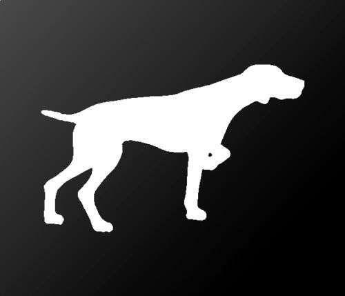 Deutscher Kurzhaariger Vorstehhund Vinyl Aufkleber Auto