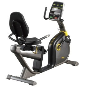 LIVESTRONG LS 5.0R Recumbent Bike - Dick's Sporting Goods