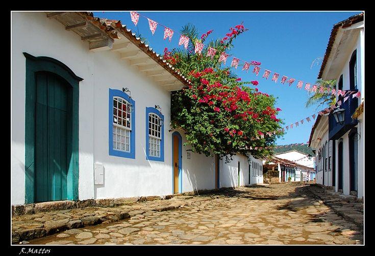 The bougainvillia, ah! It was everywhere, in red, orange, purple, and fuchsia in Bahia...