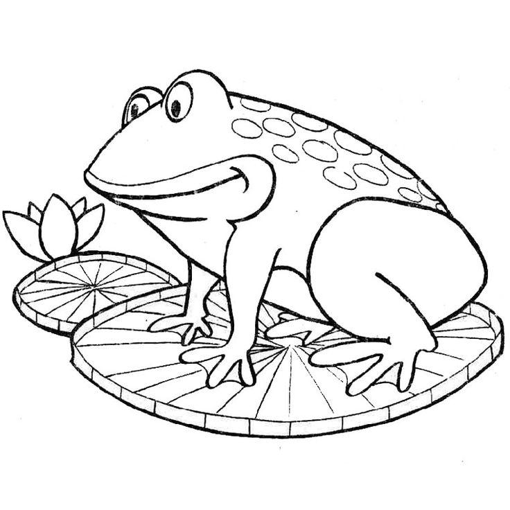 Les 25 meilleures id es de la cat gorie coloriage grenouille sur pinterest dessin grenouille - Coloriage de grenouille ...