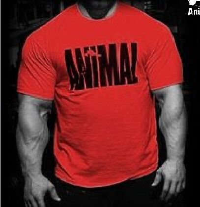 Animal print tracksuit t shirt muscle shirt Trends in 2016 fitness cotton brand clothes
