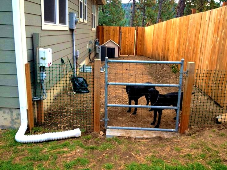 Pleasant Better Than A Dog Run Yard Ideas For Your Four Legged Family  Backyard No Fence ...
