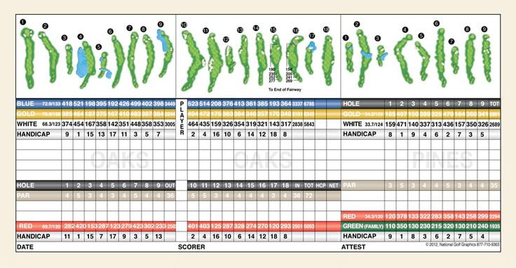 1000  ideas about golf scorecard on pinterest