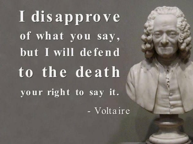 Opinions on freedom of speech? PLEASE :)?