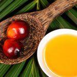 #news: l'olio di palma è davvero dannoso?!