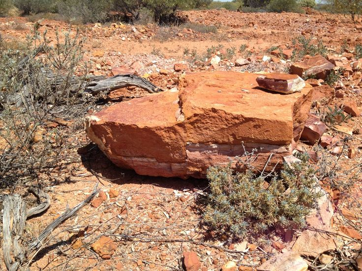 A step in the sandstone rough is an indicator of movement and a likelihood of proximate opalisation https://www.facebook.com/opalsinformation/