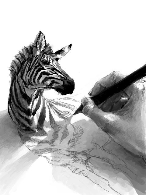 Красивый 3D рисунок зебры. Такое ощущение что зебра смотрит как её рисует парень...
