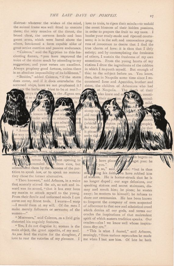 dictionary art bird print vintage BIRDS on a by ExLibrisJournals,