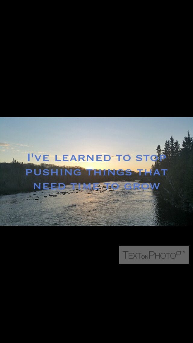 I've learned to stop pushing things that need time to grow