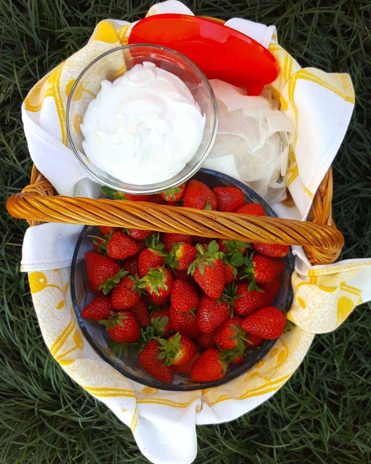 Para o picnic de hoje  morangos e leite de coco batido! - For today's picnic  strawberries and coconut milk!  #vegansofig #veganfood #vegetariano #vegano #saudavel #coco #fruta #vegan