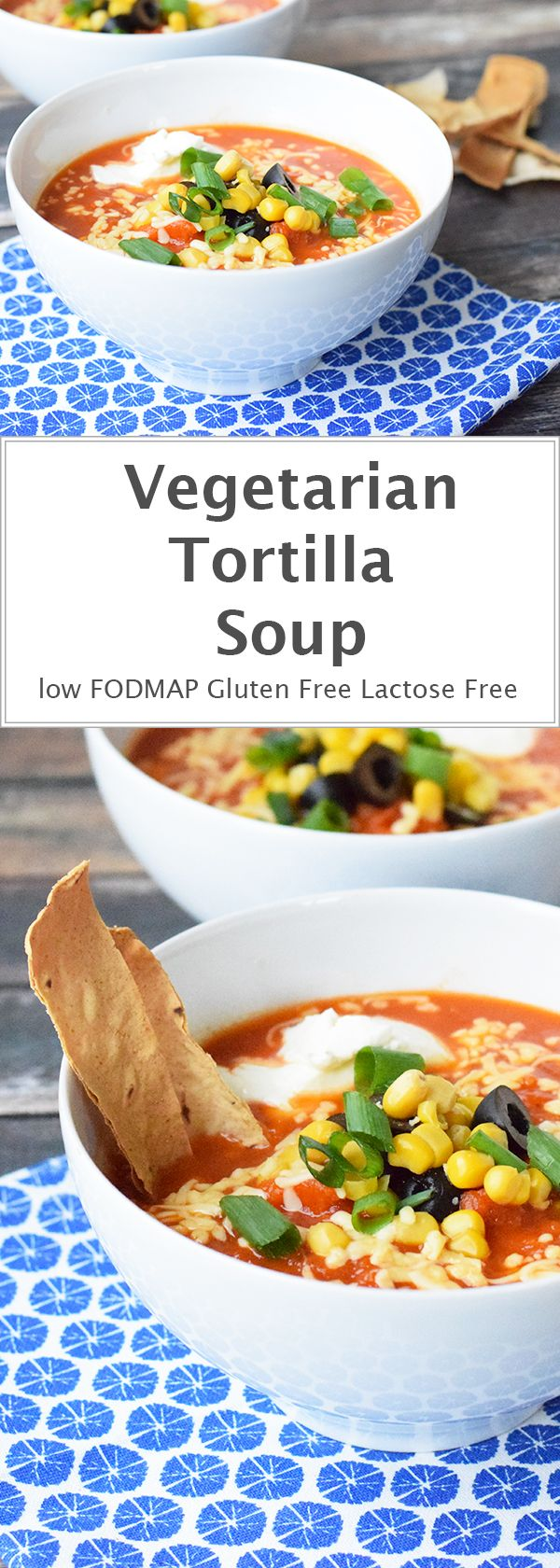 Hearty vegetarian tortilla soup with homemade tortilla chips. Low FODMAP, gluten-free and lactose-free.