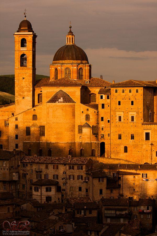 Palazzo Ducale, Urbino , Pesaro and Urbino province Marche region Italy
