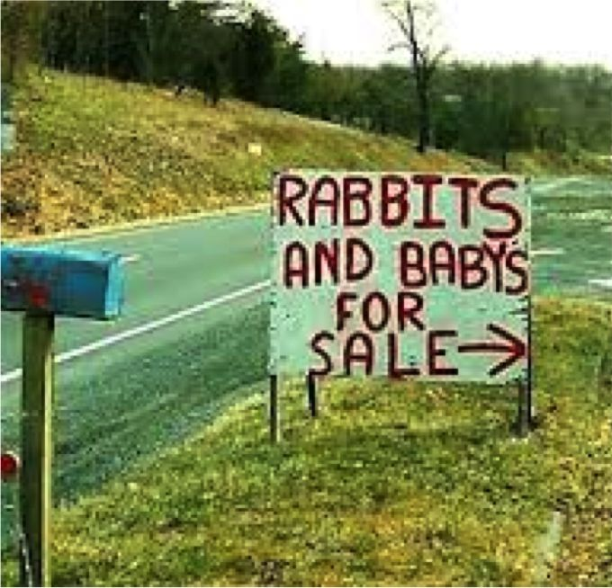 "For Sale (high cognitive effort) sign indicates that rabbits are for sale, but viewers have to momentarily wonder whether human babies or baby rabbits are also available (besides overlooking the misspelling of ""babies"")."