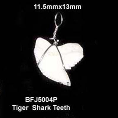 Requin Tigre Dents Pendentif Corne Osseuse Pendentif