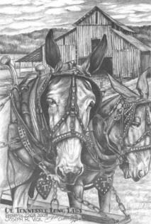 Ol' Tennessee Long Ears by Joe Vick