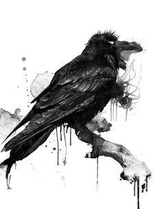 maitre corbeau