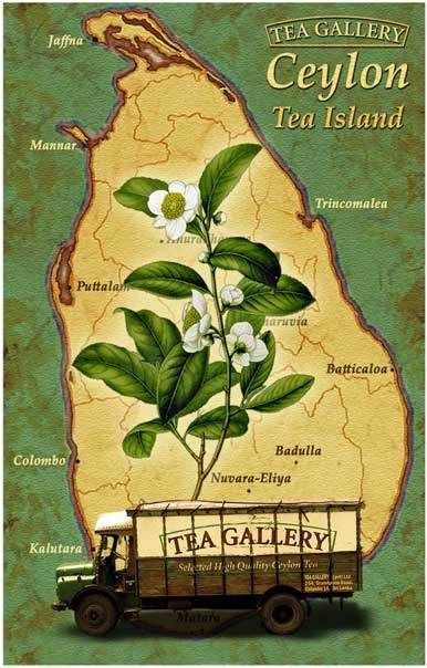 Image result for vintage ceylon posters