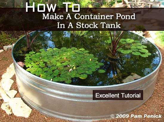 How to make a container pond in a stock tank out door z for Container pond