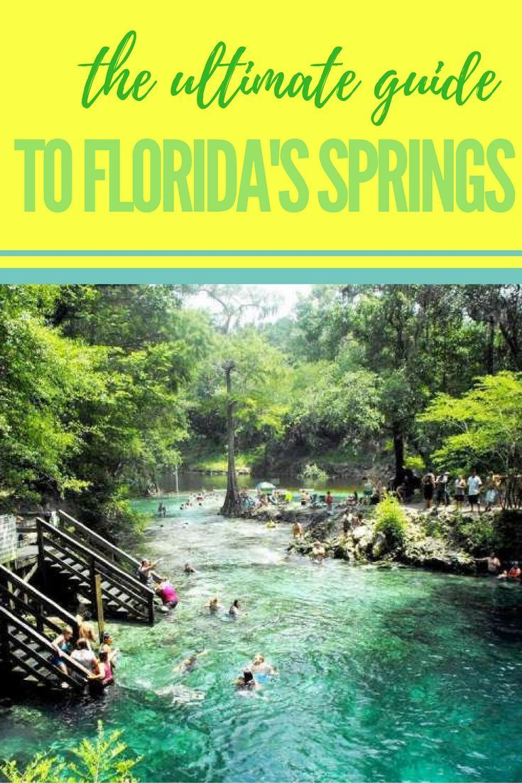 Beat The Heat With This Cool Guide To Spring Hopping In Central Florida Visit Florida Florida Travel Florida Springs
