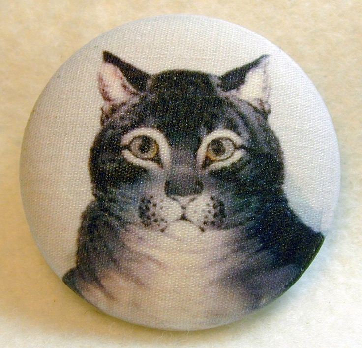 Charming Gray Tabby Cat Fabric Covered Button 1 & 1/2 inch 244