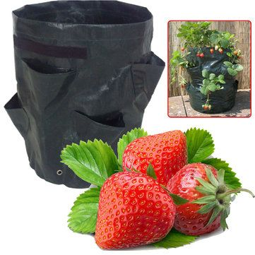 8 Pockets Potato Strawberry Planter Balcony Strawberry Planting Bag Herbs Vegetables Garden - Newchic Mobile
