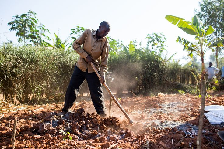 Working hard on the keyhole garden project in Rwanda (Photo credit: Esther Havens)