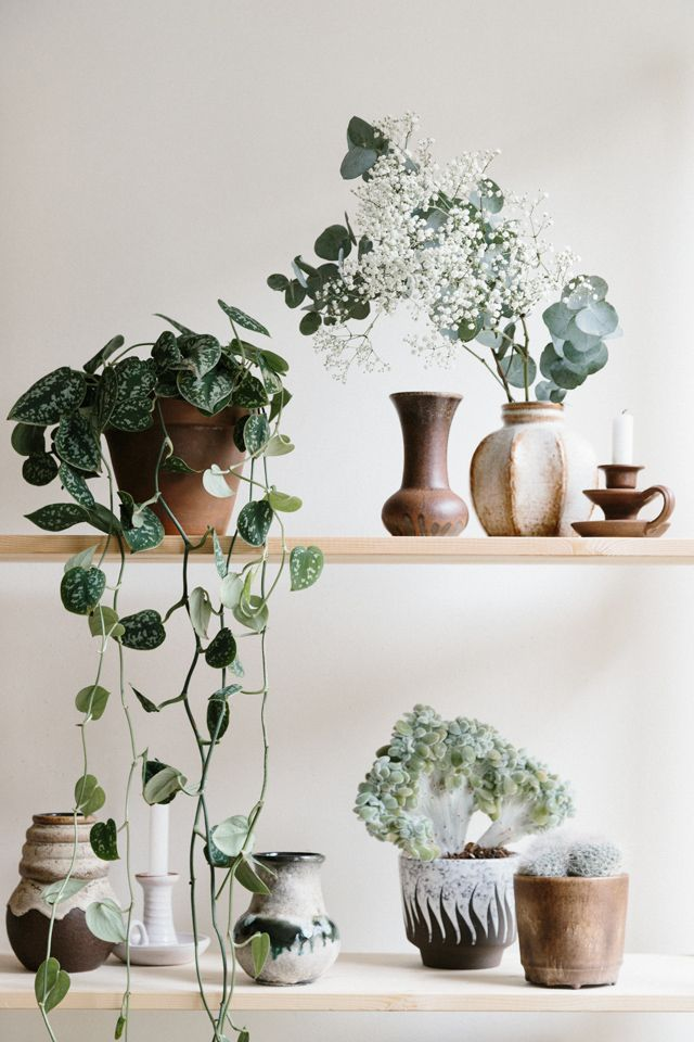 Some unique pottery and plain pairings. Fresh ceramics and style photos - a blog post from House of C.